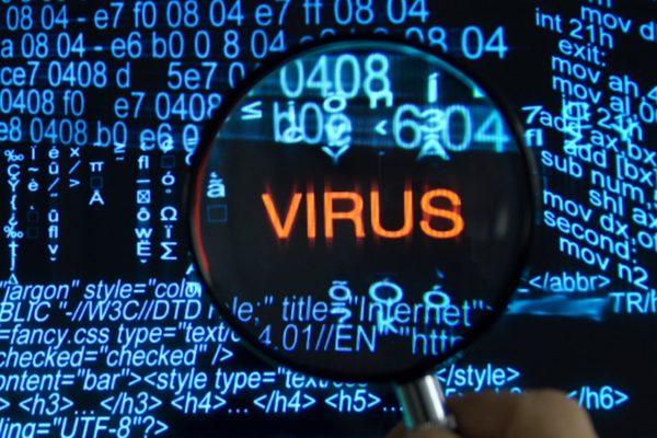 virus picture